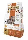 Boris Premium Gatos